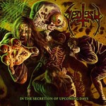 Sectesy In the Secretion cover