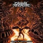 Carnal Necrosis Origins cover