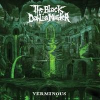 The Black Dahlia Verminous cover