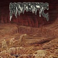 Morbific Ominous cover